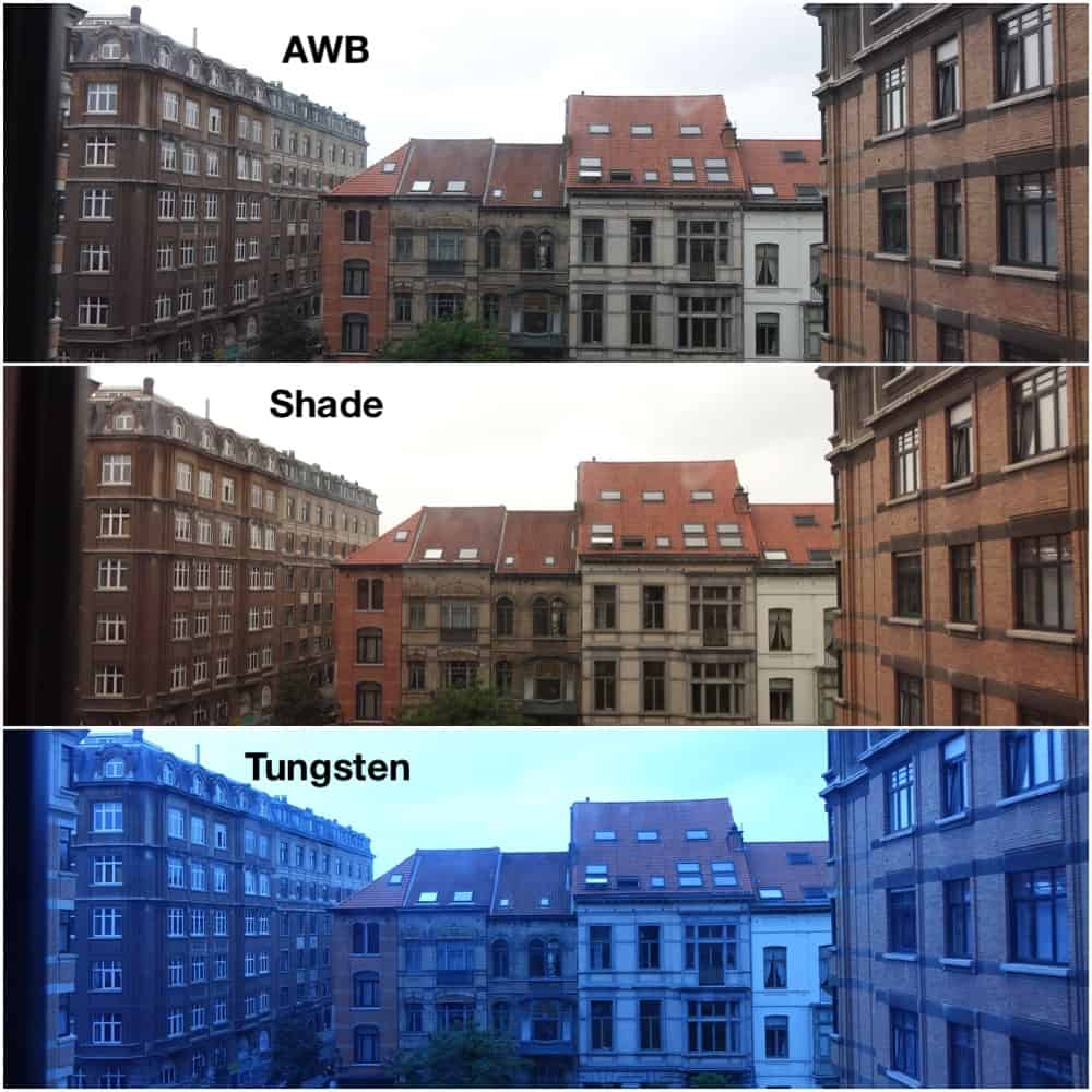 How different WB settings alter the colors of a photo