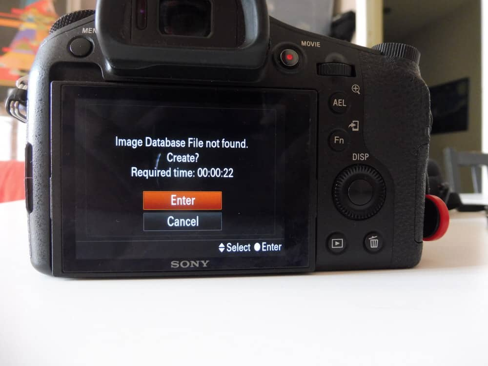 Sony RX10 display if it does not find its own database on the card