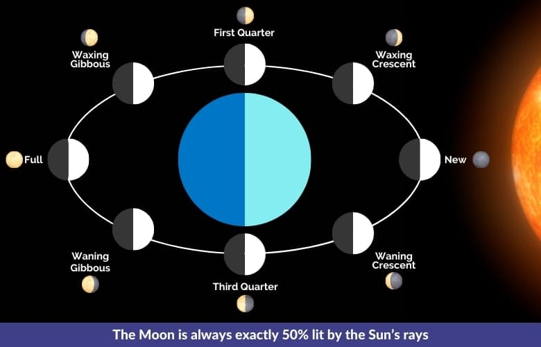 The Moon is always exactly 50% lit by the Sun's rays