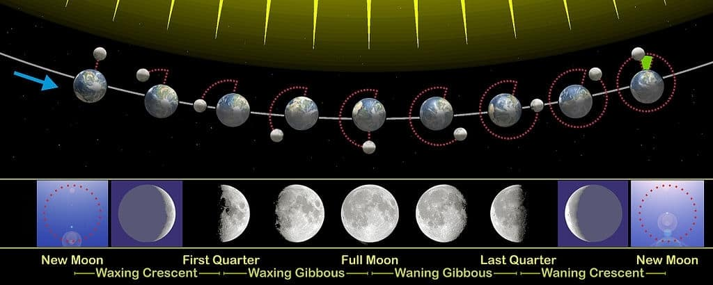 The relation of the phases of the Moon with its revolution around Earth