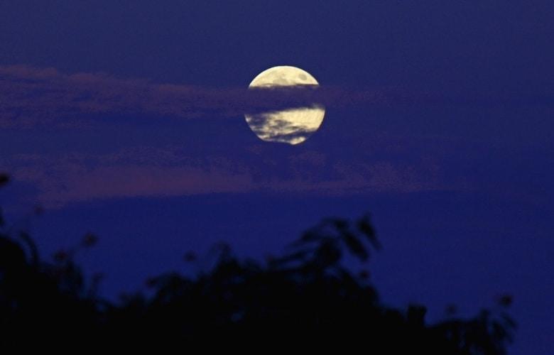 Seasonal Blue Moon