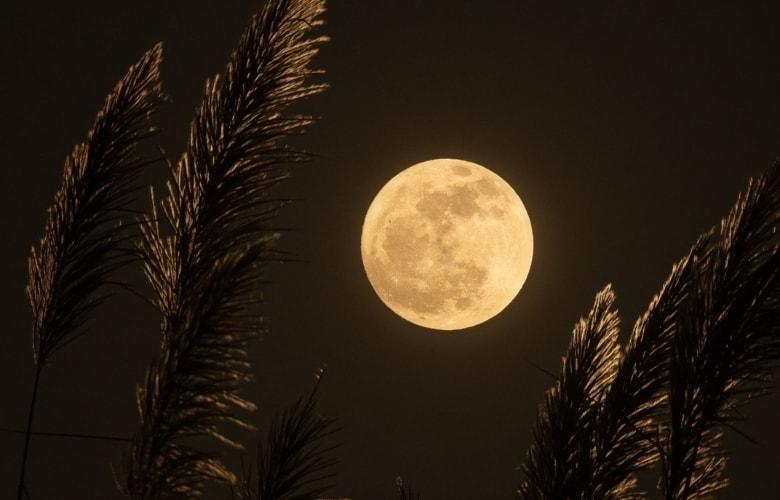 luminous full moon